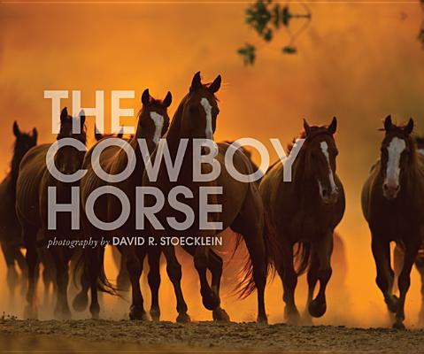 Cowboy Horse By Stoecklein, David R.